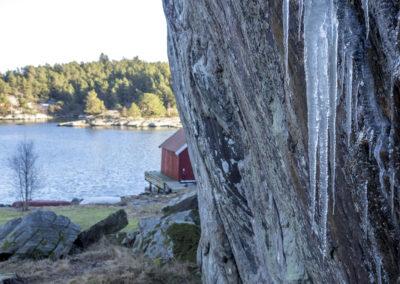 På Skogsøy ser det ut som vår, men det jo bare februar.