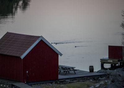 Februarstille Ørp.