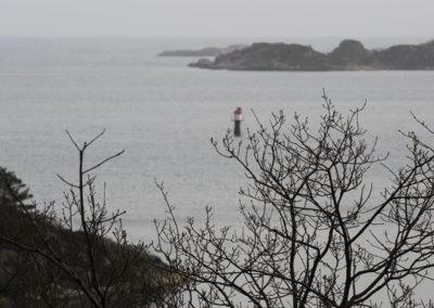 Mot sør en februardag. Vinden står litt på austan´.
