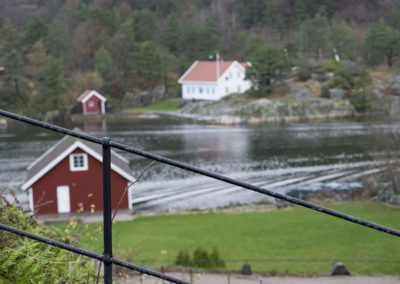Novembergrønt på Norgård mot sondet.