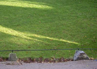 Novembergrønt på Norgård.