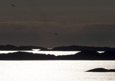 Mai og morgensol stråler over leden fra øst. Fra varden på Landøy.