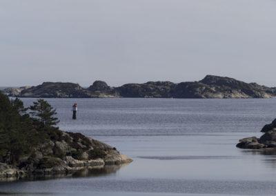 Lett trekkfullt på fjorden en aprildag.
