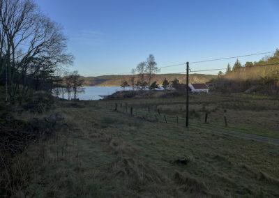 Fortsatt januar - og så gikk snøen på Landøy. Skogsøy på solsiden.