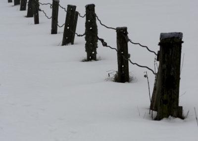 Tomtegrensene på Landøy. Det er snøvær, og januar.