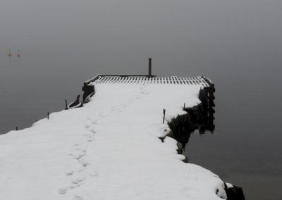 Grått, og det er januar; på nordsida av Landøy.