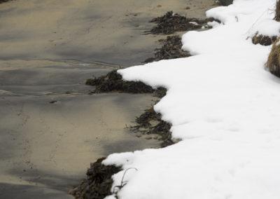 Landøy på nordsida i januar.