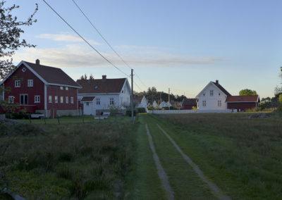 Grytidlig maistemning på Landøy.