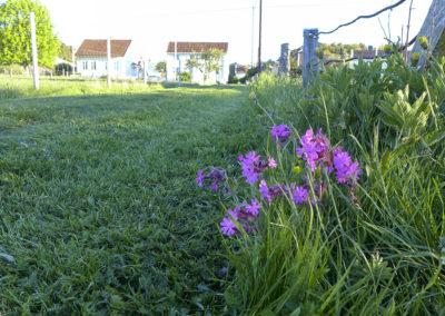 Det er mai, og våren er kommet til Landøy.