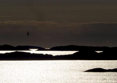 Maimorgen på vardetoppen på Landøy. Sola varmer, endelig.