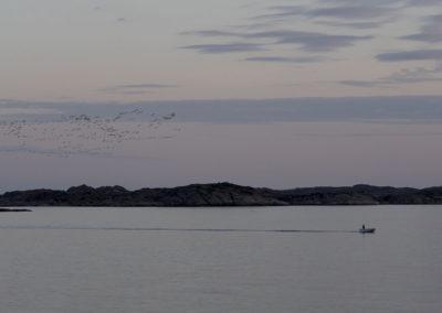 Kveldsflyvning mot Skogsøy og Landøy i juni.