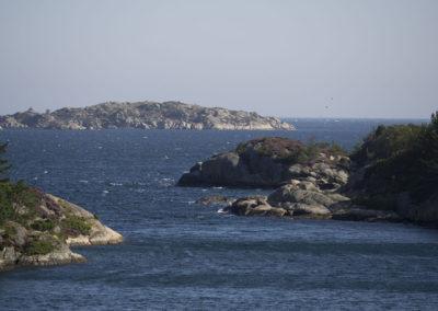 Augustdag med sønnavind. Og sjøen går vid´.